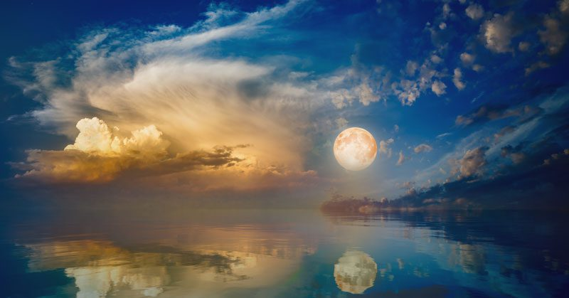 Pisces Full Moon, Watery Dreams and Turning Towards the Dark