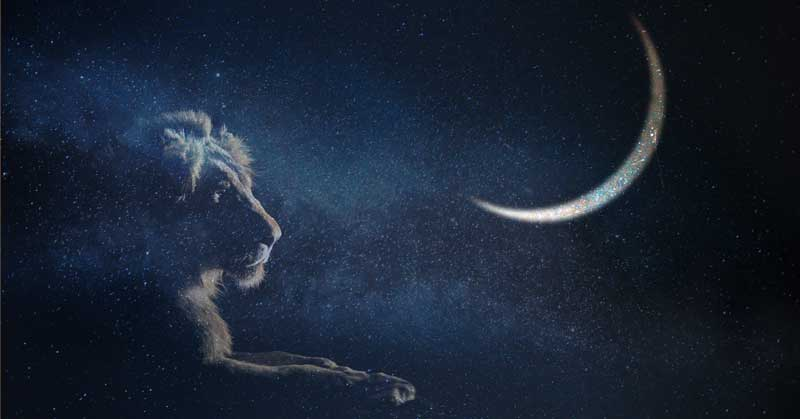 Leo New Moon, August 2021: Courage and Joy